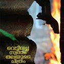 Vettivacha Swantham Thalayude Chitram